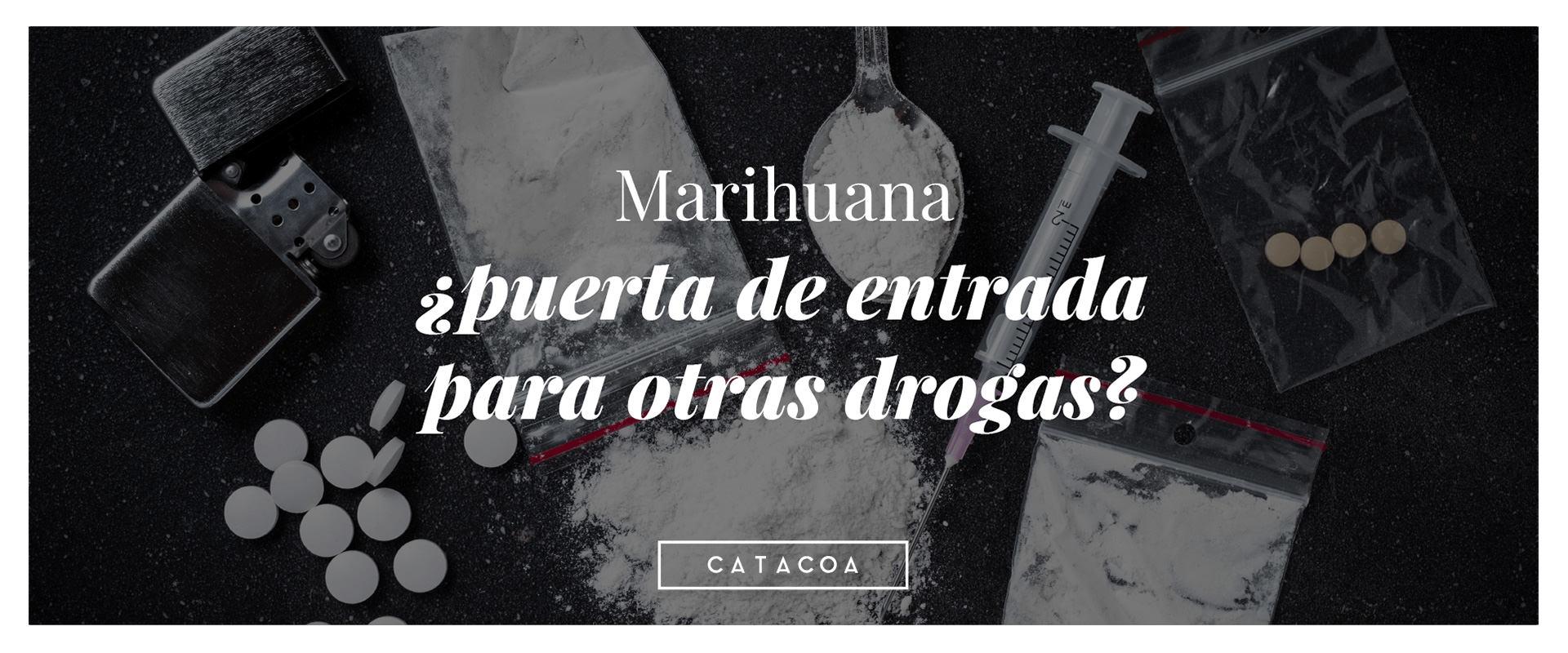 La marihuana no es la puerta de entrada a otras drogas