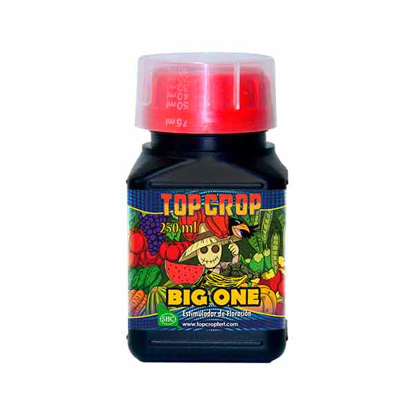 Fertilizante para Floración Big One 250ml