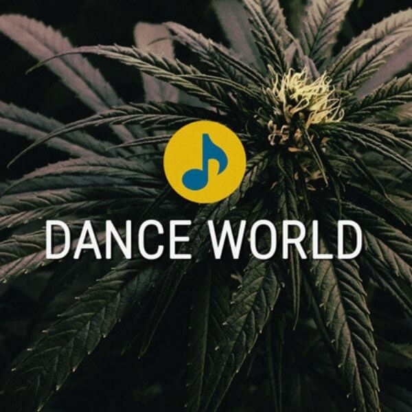 Dance World - Royal Queen Seeds